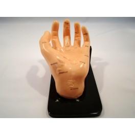 Mulaj studiu reflexoterapie si masaj- mana (cod S15)