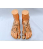 Feet study model for reflexology and massage (code S03)