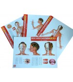 Acupuncture points map set female - small size (code H13)