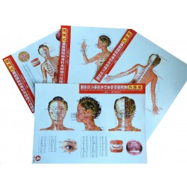 Set planse acupunctura corp femeie - dimensiune mica (cod H13)