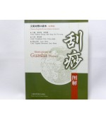 Illustrations of Guasha Therapy - pocket edition (code C27)