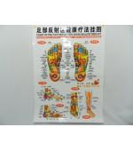 Foot map for reflexology (code H09)