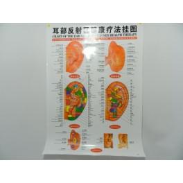 Board for ear reflexology (code H8)
