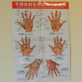 Plansa mana pentru reflexoterapie si acupunctura (cod H6)