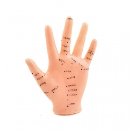Model mana studiu acupunctura (cod S01)