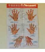 Hand map for reflexology and acupuncture (code H06)